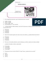 ensayo Nº 9.pdf