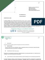 Guia Programatica Analisis Matemático