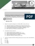 20 guia fotosintesis.docx