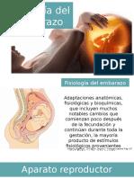 10 Fisiologia Del Embarzo