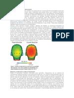 Neuroeducación y Neurodiversidad