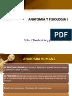 Anatomia y Ejes Planos Regiones-1