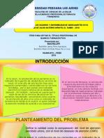 tesis diapositivas  miiiiii
