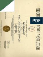 BCLS.pdf
