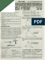 009 - TRIANGULO RECTILINEO.pdf