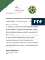 Investigacion Mercado Laboral
