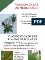 2 Clase Clasificacion de Las Plantas Medicinales (1)