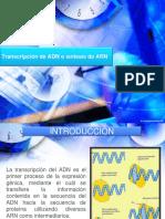 Transcripción de ADN o Síntesis de ARN