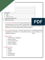 Derecho de Peticion Guia.