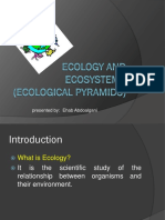 Ecology and Ecosystem - Copy