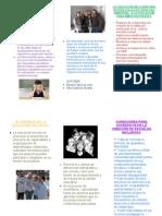 Escuelas inclusivas , triptico 1