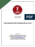DIP - District industrial Report - Palakkad