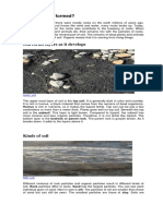 How soils are formed.docx
