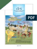 DES Regiones Productivas.docx