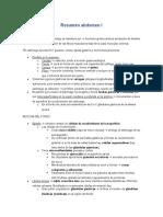 Resumen Abdomen I Histología