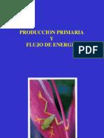 producción primaria