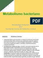 metabolismos bacterianos