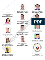 PAMPANGA AND ANGELES CITY ELECTED OFFICIALS 2016-2019.docx