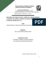 Tesis Anatomía Patológica LPAI