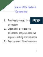 2OrganizationChrom-83