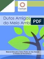 Cartilha Dutos Amigos.pdf