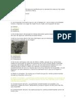 Optimización en Sistemas Naturales y Sociales