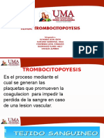 Trombocitopoyesis Ok
