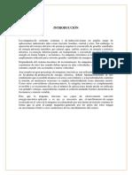 Maquinas Electricas(T).docx