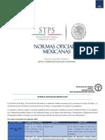 Normas Oficiales Mexicanas Betancourt Betsy