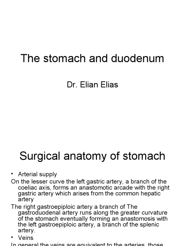 The Stomach | Peptic Ulcer | Digestive Diseases