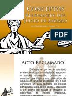 20 conceptos relevantes del Juicio de Amparo-1.pdf