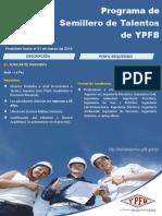 Perfiles Semilleros Talentos (1).pdf