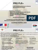 Page Informative Pro Fle