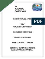 Calculo Vectorial, Diana Rosales Avilez, 32V