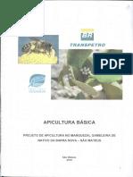 Cond. 24_apicultura Básica