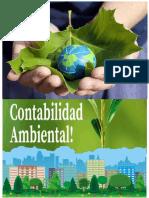 La-Contabilidad-y-el-Medio-Ambiente-desde-el-punto-de-vista-internacional..pdf