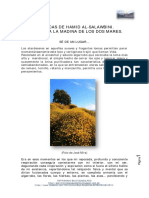 Se_de_un_lugar..._CRONICAS_DE_HAMID_AL-S.pdf