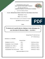 mémoire corrigé 03-07.pdf