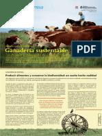 143_Pastizales.pdf