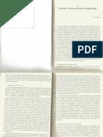 Objetivação escolha e limites - Serge PAUGAM.pdf