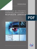Comprension del Cyberdelito.pdf