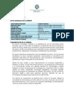 Plan de Carrera Electronic A Digital y Telecomunicaciones