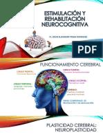 Estimulacion y Rehabilitacion Neurocognitiva