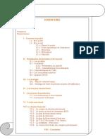 Exercices Partie v 3 Les Options Stratégiques