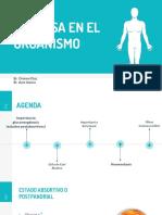 Glucosa y Su Homeostasis. Seminario Bioquimica
