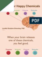 happy-chemicals01.pdf