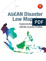 AADMER Implementation Country Profiles FINALpdf.pdf