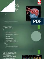 FISIOLOGIA CEREBRAL
