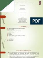 Presentación HORNO DE MICROONDAS.pptx