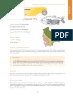 Colossoma macropomum.pdf